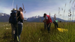 Team SPAW at the Kickinghorse field site.