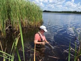 Secci Disk at Twin Lakes